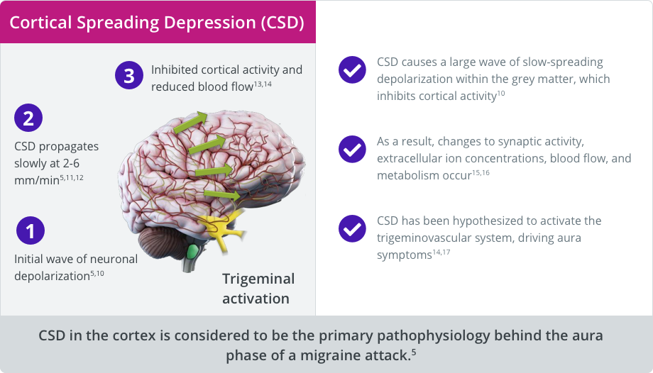 Overview of cortical spreading depression (CSD)